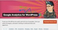 Google Analytics para Wodpress